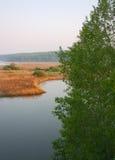 De bank van de rivier Stock Afbeeldingen