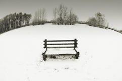 De bank van de sneeuw Stock Afbeeldingen