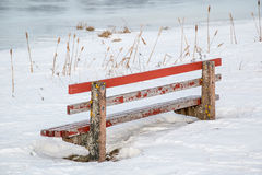 De Bank van het de winterpark Stock Foto