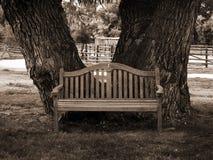 De bank van het park in sepia Stock Afbeelding