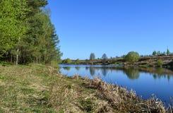 De bank van de rivier op een de zomerdag Blauwe hemel en blauw kalm water De bomen worden weerspiegeld in water Stock Foto's