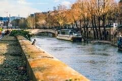 De bank van de zegenrivier in Parijs, Frankrijk stock fotografie