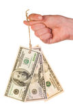 De bankbiljettenmarkering van de dollar op duim Stock Foto