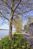 De banken van de de Loire-rivier in Saumur Stock Fotografie