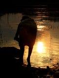 De Banken van de zonsondergang Stock Foto's