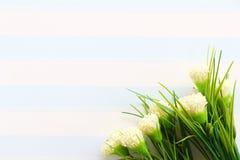 De Banner van bloemen Background royalty-vrije stock afbeelding