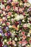 De Banner van bloemen Background stock foto's