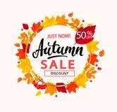 De banner van de de herfstverkoop in kader van de herfstbladeren Royalty-vrije Stock Afbeeldingen