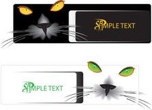 De banner van de kat Stock Foto's