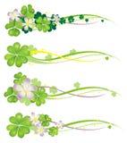 De Banner van de Lente van Horisontal met bloeiende klavers Stock Afbeelding