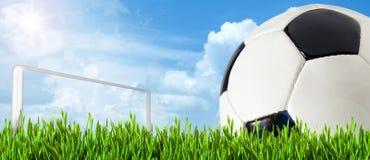 De banner van de voetbal Stock Foto's