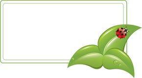 De banner van Eco royalty-vrije stock afbeeldingen