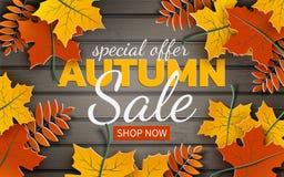 De banner van de de herfstverkoop, document de kleurrijke esdoorn van het boomblad, lijsterbes op houten textuurachtergrond Herfs royalty-vrije illustratie