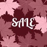 De banner van de de herfstverkoop met esdoornbladeren binnen voor het winkelen korting p Stock Afbeelding
