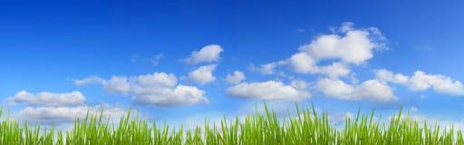 De banner van het gras en van de hemel Royalty-vrije Stock Foto