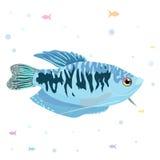 De banner van het malplaatjeontwerp voor speciale verkoop Achtergrondvissen, anker, watertextuur Het concept van de korting Vecto royalty-vrije stock fotografie