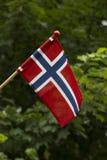 De banner van Noorwegen Royalty-vrije Stock Afbeeldingen