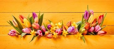 De banner van Pasen of van de Lente met kleurrijke bloemen stock foto