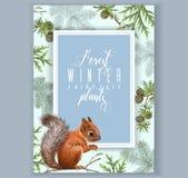 De banner van de de wintereekhoorn A 4 Royalty-vrije Stock Foto's