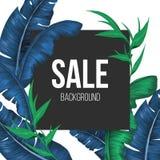 De bannerachtergrond van verkooppromo met uitheemse gewassenbladeren vector illustratie