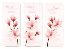 De banners met mooie kers komen bloemen tot bloei stock illustratie