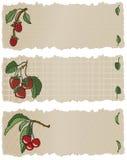 De Banners RSC van het fruit Vector Illustratie