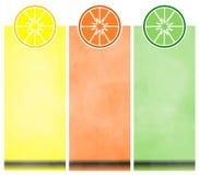 De Banners van de citrusvrucht Stock Foto