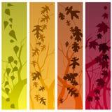 De bannersverticaal van de herfst royalty-vrije illustratie