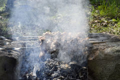 De barbecue is gebraden royalty-vrije stock foto's
