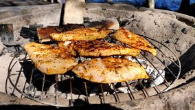 De barbecue van kip op houtskool verwarmde concrete oven in een mooie zonnige dag naast een meer in 4K stock footage