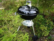 De barbecuegrill, lapjes vlees, koteletten, braadde vissen en groenten en ander voedsel stock afbeelding