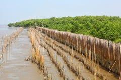 De barrière van het bamboe voor beschermt het bos Royalty-vrije Illustratie