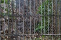 De Bars van de gevangeniscel Stock Foto's
