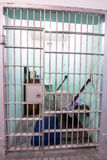 De bars van de gevangeniscel en het leven kwarten Stock Foto's