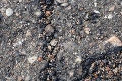 De barst op asfalt en de stenen sluiten omhoog stock afbeeldingen