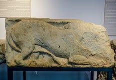 De bas-hulp van een leeuw op een steen, antiquiteit vindt in het museum van Antalya royalty-vrije stock afbeeldingen