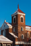 De basiliek van de kathedraal in kaunas Royalty-vrije Stock Foto's