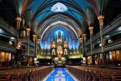 De Basiliek van Notre Dame   Stock Afbeelding