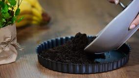 De basis van kaastaart op het bakseldienblad Gedrukte chocoladekoekjes stock video