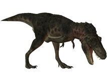 De bataar-3D Dinosaurus van Tarbosaurus Stock Afbeeldingen