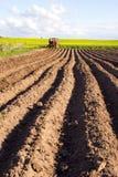 De bebouwing van de lente in de grond en de tractor stock foto's