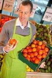 De Bediende van de Opslag van de kruidenierswinkel met Tomaten Royalty-vrije Stock Afbeeldingen