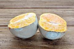 De bedorven sinaasappel wordt gesneden in twee delen Stock Afbeeldingen