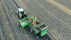 De bedrijfsmedewerkers sorteren aardappels op een tractortransportband Landbouwmachines, satellietbeeld stock video