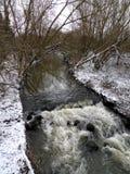 De beek die van de rivierstroom door sneeuw bebost gebied vloeien stock fotografie