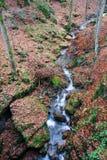 De beek van de herfst Stock Foto's