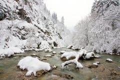 De beek van de winter Stock Afbeelding