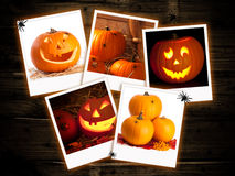 De Beelden van de Pompoen van Halloween Stock Afbeeldingen