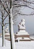 De beeldhouwwerken van de stad in St. Petersburg stock foto