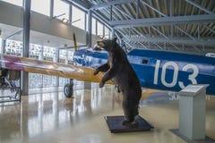 De beer Stock Afbeelding